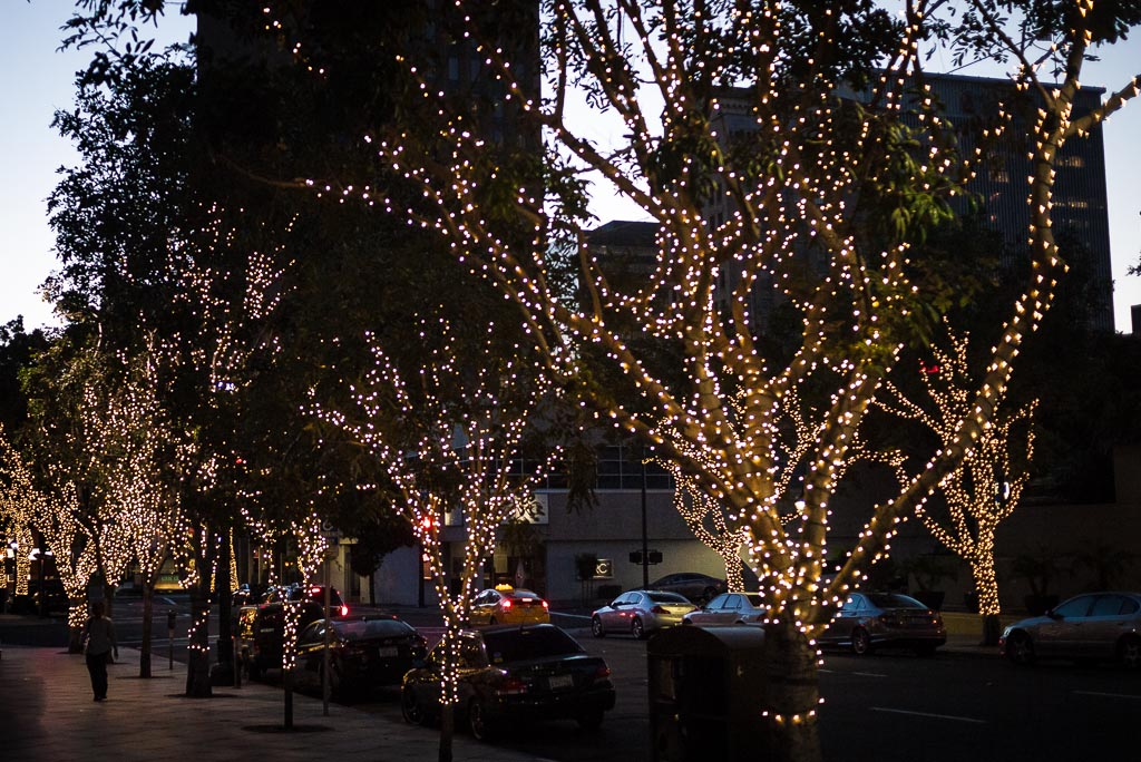 Fairy Lights For Trees Installation Brisbane