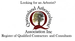 Professional Level 5 Arborist in Brisbane on the Northside. Reports and tree care.